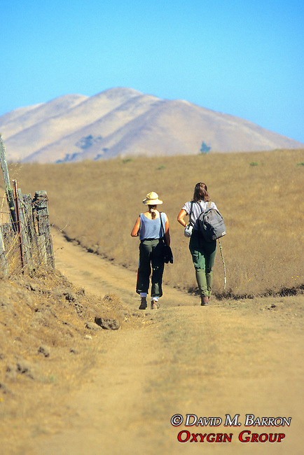 Earthwatchers Heading to Check Small Animal Traps