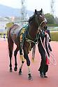Horse Racing : Hankyu Hai 2017