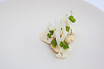Cauliflower in various textures with oyster, horseradish and oxalis