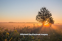 63893-02905 Sunrise at Prairie Ridge State Natural Area, Marion Co, IL