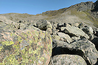 Scree slope and lichens, Cairngorm, Scottish Highlands, UK