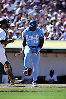 OAKLAND, CA:  Bo Jackson of the Kansas City Royals breaks his bat over his knee after striking out for the fourth time in the game against Oakland Athletics pitcher Bob Welch during their game at the Oakland Coliseum in Oakland, California on June 5, 1990. (Photo by Brad Mangin)
