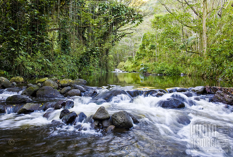 Streaming river in Waipio Valley on the Big Island of Hawaii