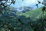 Gombe National Park, Tanzania.Kakombe Valley