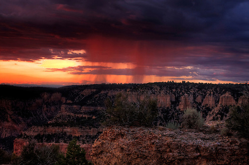 A summer monsoon storm pours rain during sunset over the Grand Canyon at Fence Point in the Kaibab National Forest