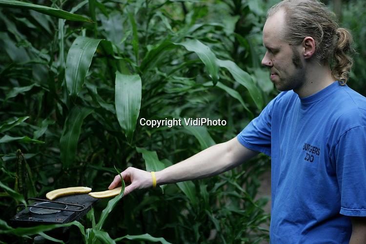 Foto: VidiPhoto..ARNHEM - Dierenverzorger Christiaan Luttenberg aan het werk in Burgers' Zoo. Foto: Christiaan legt halve banaan op plankje..