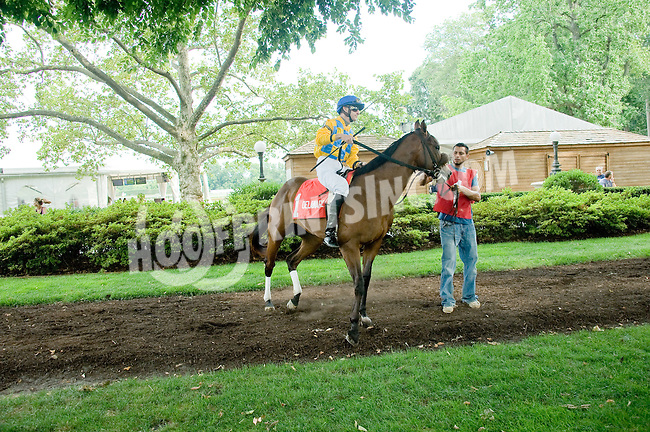 On the Go before The Par Four Stakes at Delaware Park on 7/12/12