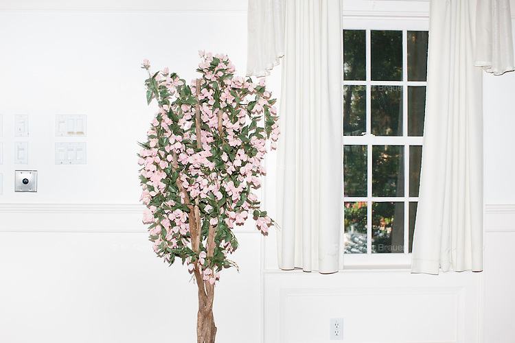 "A potted tree with pink petals stands at the edge of the room where Republican presidential candidate Bobby Jindal speaks to people gathered at his ""Believe Again"" campaign event at the Governor's Inn and Restaurant in Rochester, New Hampshire. Jindal is campaigning in New Hampshire in advance of the 2016 Republican presidential primary there."