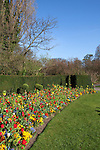 Beautiful flowerbeds with a variety of bright, colorful flowers on a sunny spring day in Regent's Park, London, England