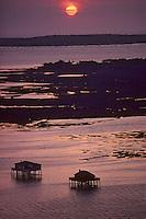 Europe/France/Aquitaine/33/Gironde/Bassin d'Arcachon: L'Ile aux Oiseaux au soleil couchant Vue aérienne