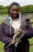 Holding a ferret (with its lead on).  14-16yr olds on the School Link Project doing Animal Care at F.E.College.