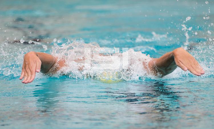 BERKELEY, CA - November 11, 2016: Cal Bears Women's Swimming & Diving team vs. Texas Longhorns at Spieker Aquatics Center. Final score, Cal Bears 148, Texas 152.
