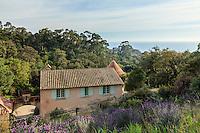 Le Domaine du Rayol:<br /> la ferme (1910-1912), la mer et lavandes papillon.