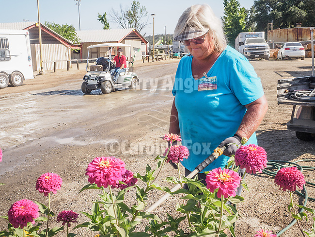 Katie Bryant, Flower Goddess,<br /> <br /> Day 4 of the 79th Amador County Fair--Junior Livestock Auction, Destruction Derby, exhibits, music and more!<br /> <br /> #AmadorCountyFair, #PlymouthCalifornia,<br /> #TourAmador, #VisitAmador