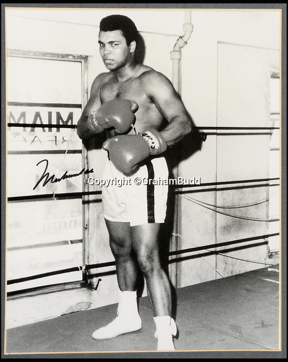 "BNPS.co.uk (01202 558833)<br /> Pic: GrahamBudd/BNPS<br /> <br /> Cassius Clay training in 1963.<br /> <br /> For sale...'Enry's 'Ammer's that floored The Greatest.<br /> <br /> A British boxing legend's gloves - that Muhammad Ali claimed hit him so hard ""his ancestors in Africa felt it"" have emerged for auction for the knock out price of £50,000. <br /> <br /> Sir Henry Cooper wore them when he sent him crashing to the mat with his trademark 'Enry's 'Ammer' left hook in front of a baying Wembley crowd in 1963.<br /> <br /> Described at the time as 'the punch that shook the world' it was one of the few times the fighter was floored - although he controversially recovered."