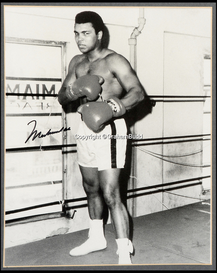 """BNPS.co.uk (01202 558833)<br /> Pic: GrahamBudd/BNPS<br /> <br /> Cassius Clay training in 1963.<br /> <br /> For sale...'Enry's 'Ammer's that floored The Greatest.<br /> <br /> A British boxing legend's gloves - that Muhammad Ali claimed hit him so hard """"his ancestors in Africa felt it"""" have emerged for auction for the knock out price of £50,000. <br /> <br /> Sir Henry Cooper wore them when he sent him crashing to the mat with his trademark 'Enry's 'Ammer' left hook in front of a baying Wembley crowd in 1963.<br /> <br /> Described at the time as 'the punch that shook the world' it was one of the few times the fighter was floored - although he controversially recovered."""
