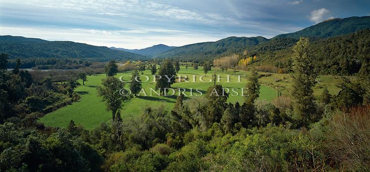 Green farmland. Buller Region. New Zealand.