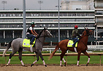 April 28, 2019 : Trainer Bill Mott's horses Tacitus (left) and Country House train at Churchill Downs, Louisville, Kentucky, in preparation for the Kentucky Derby. Mary M. Meek/ESW/CSM
