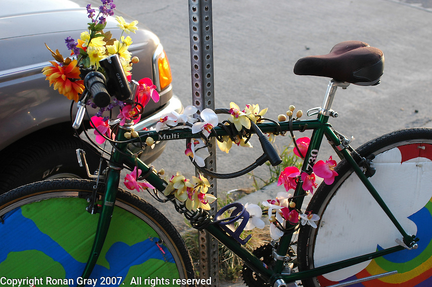Amanda Yancey's bicycle Rainbow Warrior is decorated with art and flowers, Tuesday, in San Diego October 30, 2007. She decorated the bicycle for the monthly Critical Mass ride that takes place on the last Friday of every month in San Diego and many other cities around the nation and the world. These rides are designed to draw attention to how unfriendly cities have become to bicycle traffic and, according to a local website for the group ?to show how things could be different?.