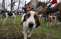 The Grace Episcopal Church held it's annual Blessing of the Hounds service followed by a traditional foxhunt with the Keswick Hunt Club Thursday morning in Keswick, Virginia.