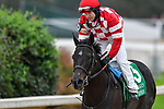 March 14, 2020: Serengeti Empress (5) with jockey Joseph Talamo aboard during the Azeri Stakes at Oaklawn Racing Casino Resort in Hot Springs, Arkansas on March 14, 2020. Ted McClenning/Eclipse Sportswire/CSM (Photo by Ted McClenning/Eclipse Sportswire/Cal Sport Media)