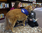 Brady Reed, 9 , of Ellington, smiles as he gets a close up look from Madison, owned by Beth Waggoner as members of Healers with Halos  based in Bolton, did a reading with the dogs event,  Saturday, December, 16, 2017, at the Hall Memorial Library in Ellington. (Jim Michaud / Journal Inquirer)