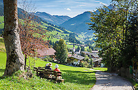 Austria, Tyrol, Alpbach: picturesque village at Alpbach Valley within the Kitzbuehel Alps | Oesterreich, Tirol, Alpbach: malerisches Dorf im Alpbachtal in den Kitzbueheler Alpen