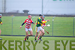 Kerry Hurlers v Cork Institute Technology in the Waterford Crystal Cup at Austin Stack Park, Tralee on Saturday 15th January.