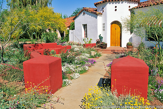 Phoenix garden designer Carrie Nimmer converted this front yard xeriscape into a memorable and striking scenario by installing a low banco wall and painting it brick red.