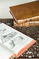 Detail of an antique book