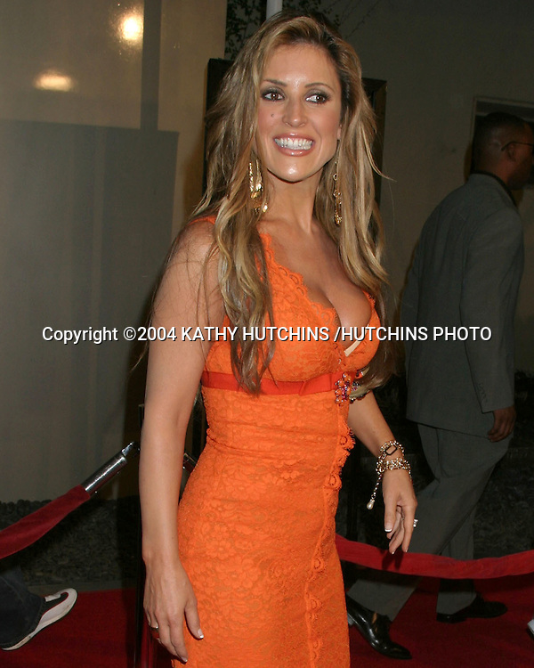 "©2004 KATHY HUTCHINS /HUTCHINS PHOTO.WORLD PREMIERE OF ""RAY"".HOLLYWOOD, CA.OCTOBER 19, 2004..JILLIAN BARBERIE"