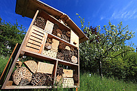 Nesting box for solitary bees.<br /> Nichoir &agrave; abeilles solitaires.