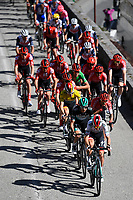 14th March 2020, Paris to Nice cycling tour, final day, stage 7;  General view of the peleton during stage 7 of the 78th edition of the Paris - Nice cycling race, a stage of 166,5km with start in Nice and finish in Valdeblore La Colmiane on March 14, 2020 in Valdeblore La Colmiane, France