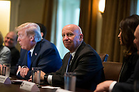 United States House of Representatives Ways and Means Committee Chairman, Representative Kevin Brady, Republican of Texas, center, while United States President Donald J. Trump speaks with reporters about his proposed tax reform plan in the cabinet room during a meeting with congressional republicans at the White House in Washington, D.C. on November 2nd, 2017. Credit: Alex Edelman / CNP /MediaPunch