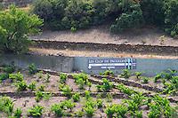 Sign in the vineyards. Domaine Les Clos de Paulilles. Roussillon. France. Europe. Vineyard.