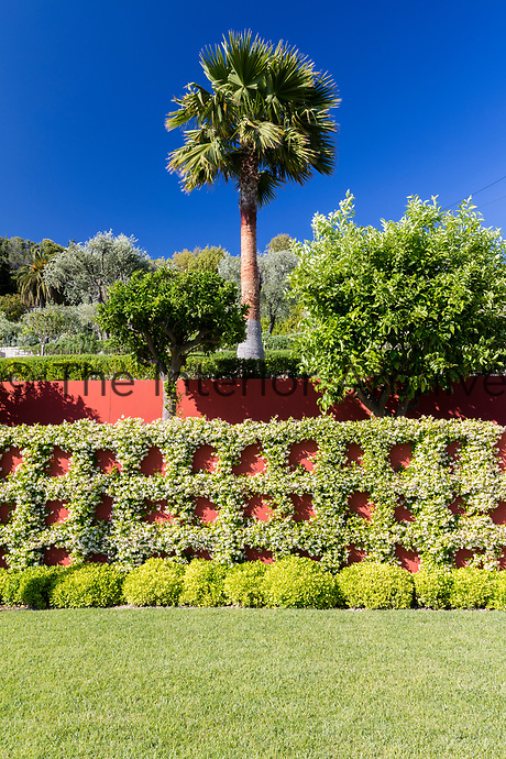 The symmetry of an espalier style planting is set against a terracotta coloured wall.