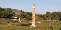 The Artemision or Temple of Artemis, centre for the cult of Artemis, with a column recreated from fragments found on site in 1973, Ephesus, Izmir, Turkey.<br /> The Artemision was the most important sanctuary of Ephesus, dedicated to the goddess Artemis. Three Artemisions have been built and subsequently destroyed, in the 6th, 4th and 3rd centuries BC. Today only the foundations and a few sculptures remain. This column is an architectural model created from sections of various columns found on the site, standing on an original column base from the last, late classical temple. Beneath this lies a base from the 6th century BC Croesus Temple. Storks now nest on top of the column, as seen here. The site has become overcome with swamp in recent centuries. The temple was one of the Seven Wonders of the Ancient World. Ephesus was an ancient Greek city founded in the 10th century BC, and later a major Roman city, on the Ionian coast near present day Selcuk. Picture by Manuel Cohen