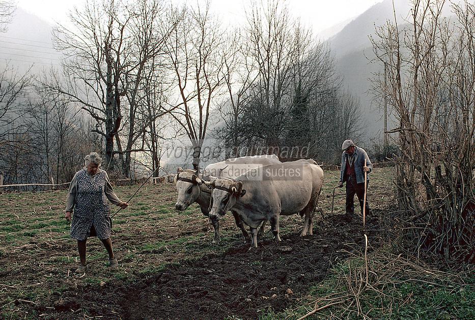Europe/France/Midi-Pyrénées/09/Ariège/Le Couserans/Vallée de Biros/Uchentein: Vie rurale - Labour avec attelage<br /> PHOTO D'ARCHIVES // ARCHIVAL IMAGES<br /> FRANCE 1980