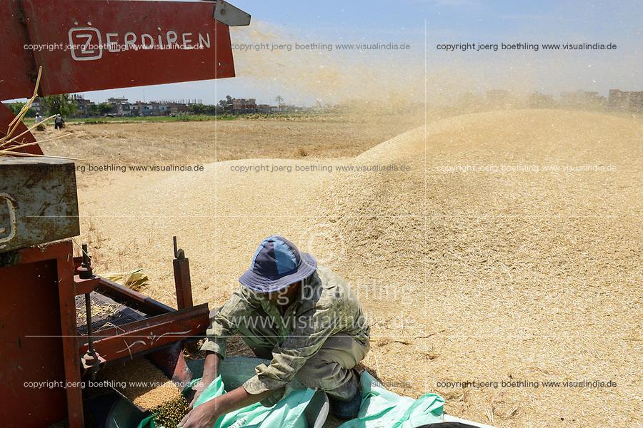 EGYPT, governate Beheira, Kafra Eldawar, farming in the Nile delta , harvest of wheat , trashing machine/ AEGYPTEN, Beheira, Landwirtschaft im Nildelta, Ernte von Weizen, Dreschmachine