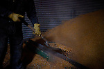 A farm hand shovels corn inside a silo on Wednesday, November 30, 2011 in Webster City, IA.