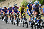 Deceuninck-Quick Step with race leader Julian Alaphilippe (FRA) Yellow Jersey on the front of the peloton during Stage 17 of the 2019 Tour de France running 200km from Pont du Gard to Gap, France. 24th July 2019.<br /> Picture: ASO/Alex Broadway | Cyclefile<br /> All photos usage must carry mandatory copyright credit (© Cyclefile | ASO/Alex Broadway)