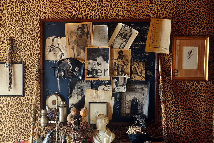 On the leopard-print wallpaper in the living room of Jean Cocteau's house in Milly-la-Foret a notice board displays photographs of friends and colleagues including Picasso and Jean Marais