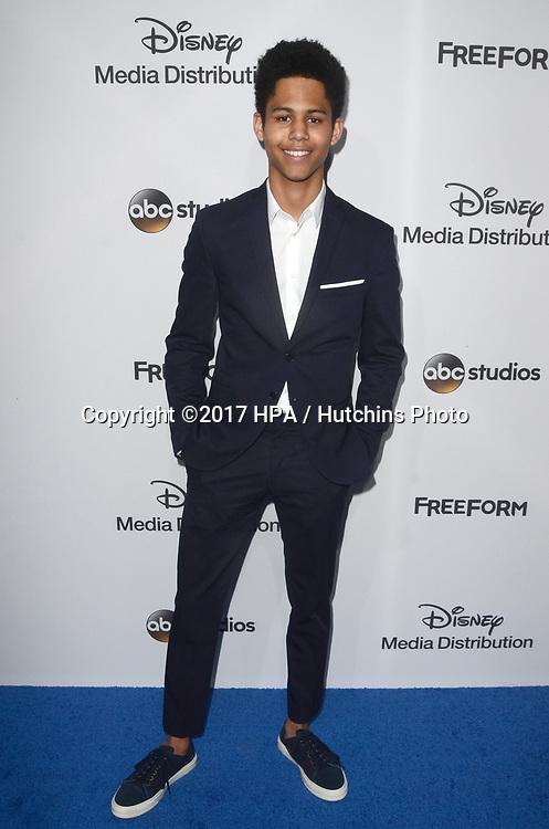 LOS ANGELES - MAY 21:  Rhenzy Feliz at the 2017 ABC/Disney Media Distribution International Upfront at the Walt Disney Studios on May 21, 2017 in Burbank, CA