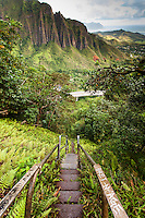 """An aerial view of the  Ko'olau mountain range & H-3 freeway w/ steps descending into Haiku valley at dawn from Haiku Stairs (""""Stairway to Heaven"""") hiking trail in Kaneohe, Oahu"""
