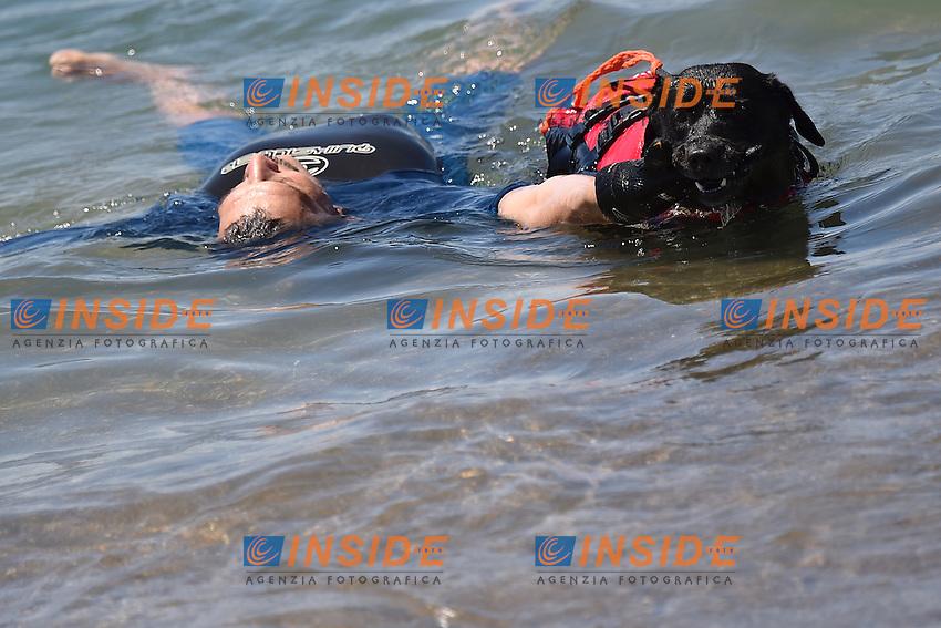 Cani da salvataggio - Rescue dogs <br /> Roma 26-05-2015 Ostia <br /> Giornata del nuoto e della sicurezza acquatica <br /> Day of Swimming and water safety <br /> Foto Andrea Staccioli / Insidefoto