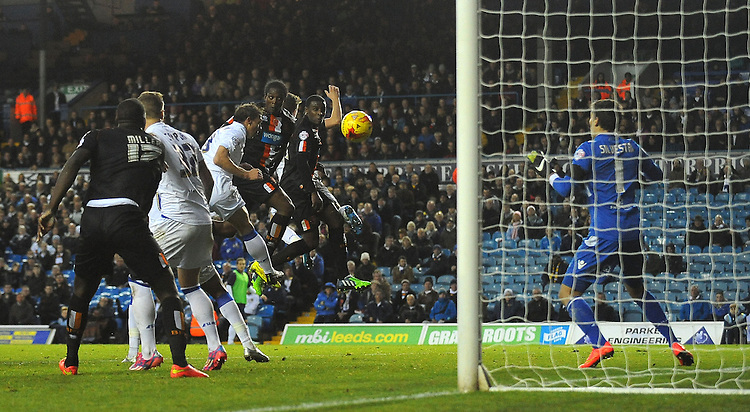 Blackpool's Nile Ranger scores his sides first goal  <br /> <br /> Photographer Kevin Barnes/CameraSport<br /> <br /> Football - The Football League Sky Bet Championship - Leeds United v Blackpool - Saturday 8th November 2014 - Elland Road - Leeds<br /> <br /> &copy; CameraSport - 43 Linden Ave. Countesthorpe. Leicester. England. LE8 5PG - Tel: +44 (0) 116 277 4147 - admin@camerasport.com - www.camerasport.com