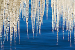 A photo of icicles and Lake Tahoe in California
