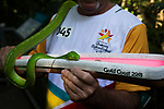 Batonbearer Jospeh Reichl carrying the Baton as the Queen's Baton Relay visited Daintree Discovery Centre. In the host state of Queensland the Queen's Baton will visit 83 communities from Saturday 3 March to Wednesday 4 April 2018. As the Queen's Baton Relay travels the length and breadth of Australia, it will not just pass through, but spend quality time in each community it visits, calling into hundreds of local schools and community celebrations in every state and territory. The Gold Coast 2018 Commonwealth Games (GC2018) Queen's Baton Relay is the longest and most accessible in history, travelling through the Commonwealth for 388 days and 230,000 kilometres. After spending 100 days being carried by approximately 3,800 batonbearers in Australia, the Queen's Baton journey will finish at the GC2018 Opening Ceremony on the Gold Coast on 4 April 2018.