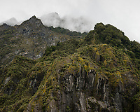 Moss covered cliffs in clouds, Franz Josef Glacier Valley, Westland Tai Poutini National Park, South Westland, West Coast, UNESCO World Heritage Area, New Zealand, NZ