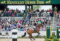 ROCKFIELD GRANT JUAN, ridden by Shandiss McDonald (CAN), competes during Stadium Jumping at the Rolex 3-Day Event at the Kentucky Horse Park in Lexington, Kentucky on April 28, 2013.